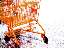 saving on grocery