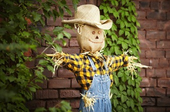 Make-Your-Own-Scarecrow-med